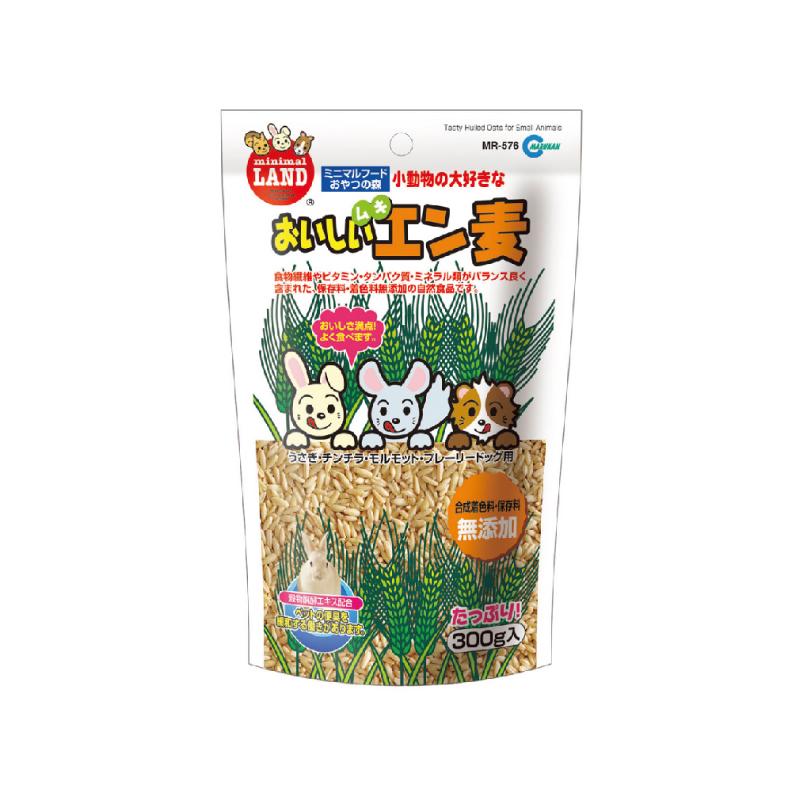 日本純天然小麥粒 270G